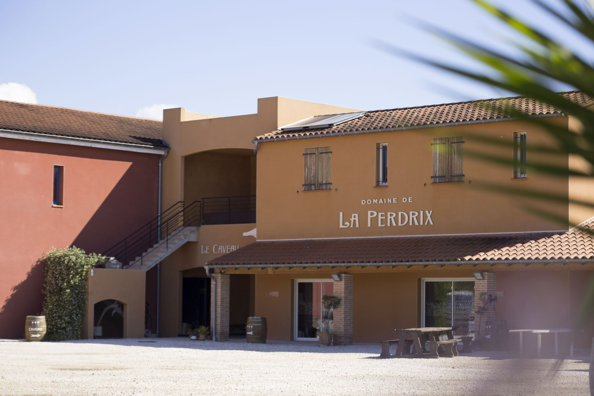 Domaine De La Perdrix Vins Rivesaltes Grenat Muscat Terroir Aspres