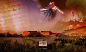 Visuel Musique 02